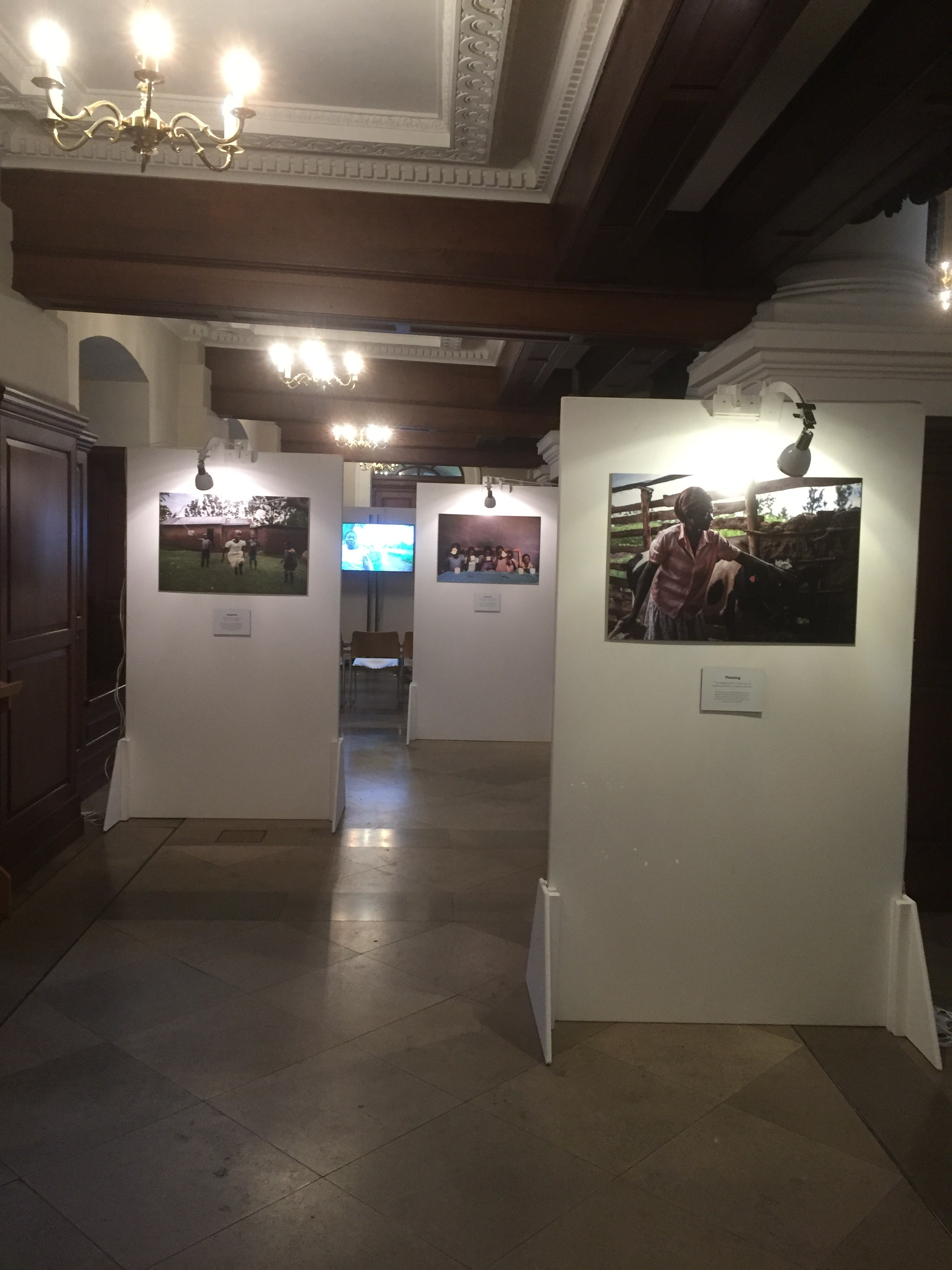 single art gallery stands